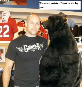 Bears Love Begin